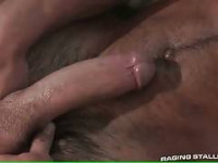 Bear Gay Videos preview #3
